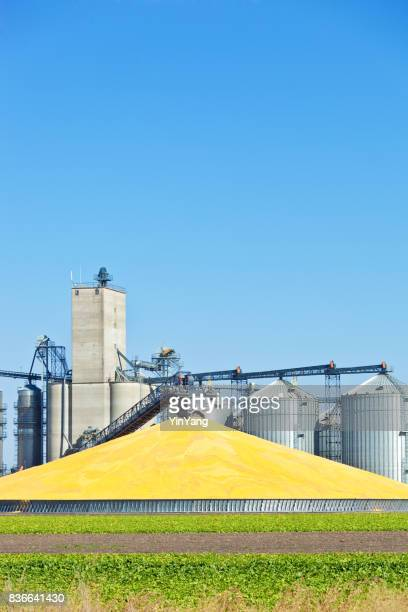 Corn Processing Plant and Silos During Harvest at Daytime