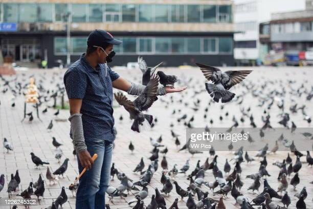 Corn seller feeds pigeons alone in Plaza de la Gobernacion of Cali, generally full of people and now empty during the Coronavirus lockdown.