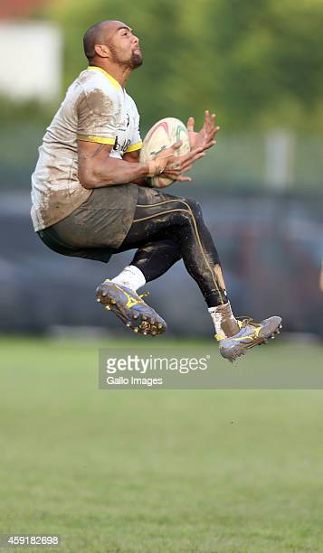 Cornal Hendricks during the South African national rugby team training session at Stadio Plebiscito on November 18 2014 in Padua Italy