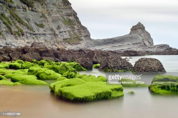 corner in beach langre - teodosio moreno fotografías e imágenes de stock
