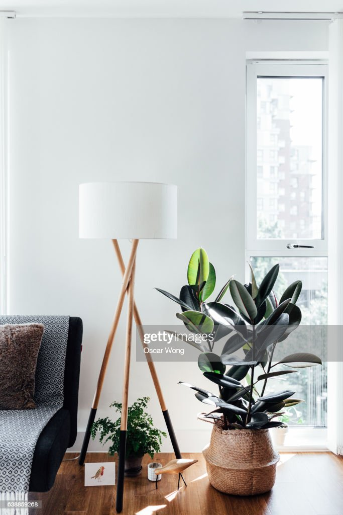 A corner of a stylish living room : Stock Photo