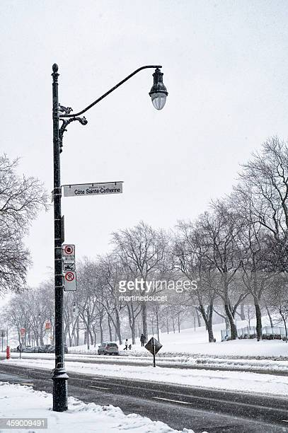 Corner of Cote Sainte-Catherine and Park Avenue in winter, Montreal.