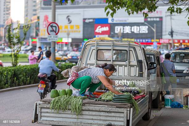 corner of the street in beijing residence area - bush bean stock photos and pictures
