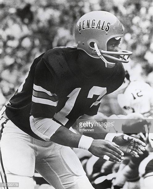 Cornerback Ken Riley of the Cincinnati Bengals lines up at scrimmage during an NFL game Ken Riley played in the NFL from 196983