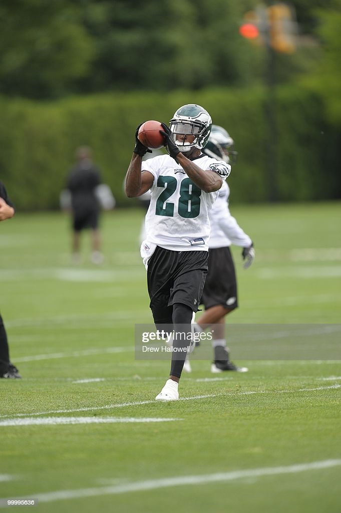 Cornerback Marlin Jackson #28 of the Philadelphia Eagles catches a pass during practice on May 19, 2010 at the NovaCare Complex in Philadelphia, Pennsylvania.