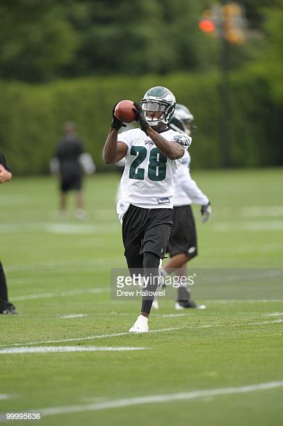 Cornerback Marlin Jackson of the Philadelphia Eagles catches a pass during practice on May 19 2010 at the NovaCare Complex in Philadelphia...