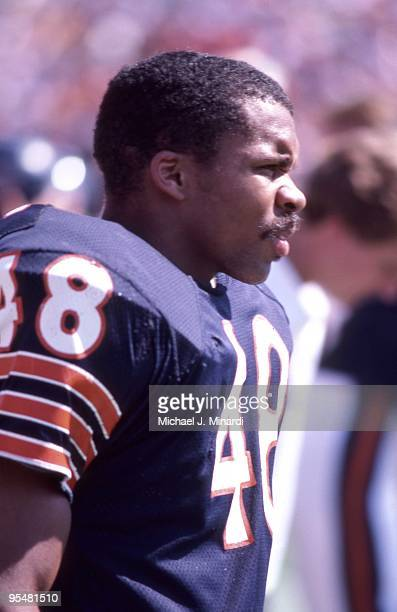 Cornerback Reggie Phillips of the Chicago Bears readies himself for a NFL game against Tampa Bay Buccaneers at Tampa Stadium on October 6 1985 in...