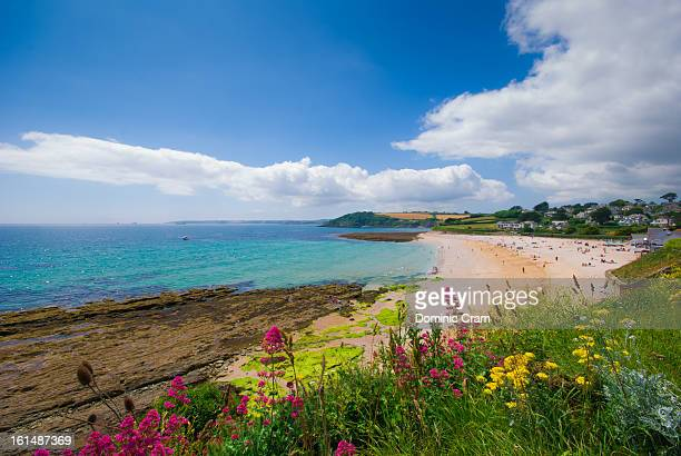 cornish summer beach - cornwall england stock pictures, royalty-free photos & images