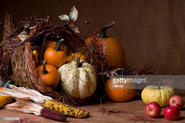 cornucopia (xxl) - indian corn stock photos and pictures