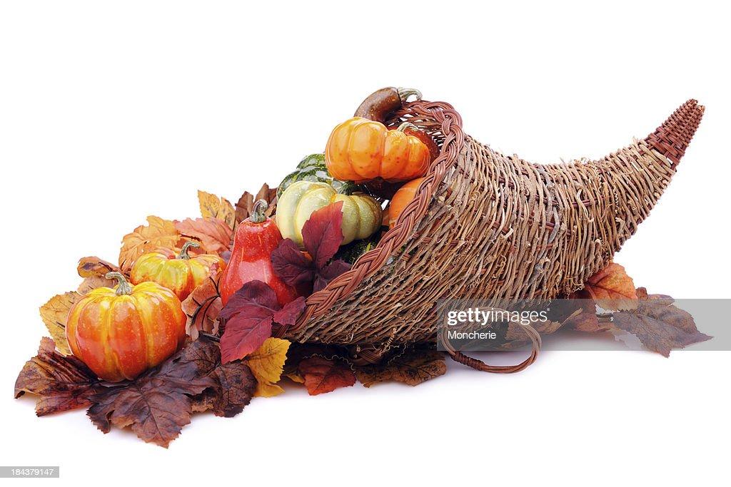Cornucopia with pumpkins : Stock Photo