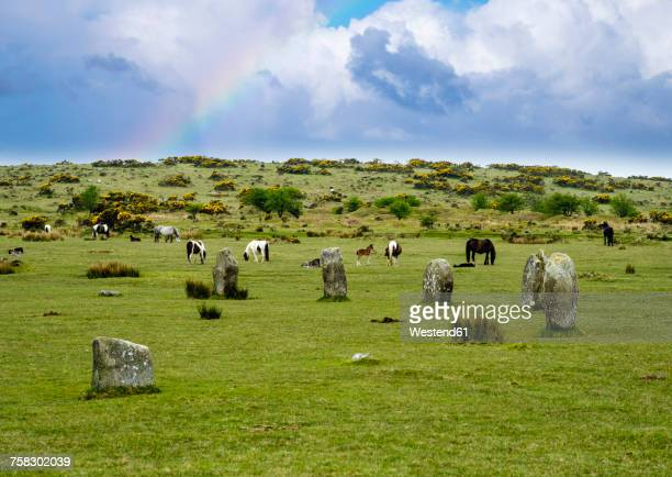UK, Cornwall, Bodmin Moor, stone circle The Hurlers