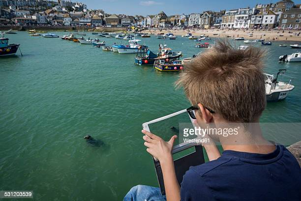 UK, Cornwall, boy photographing a seal at St Ives with his digital tablet