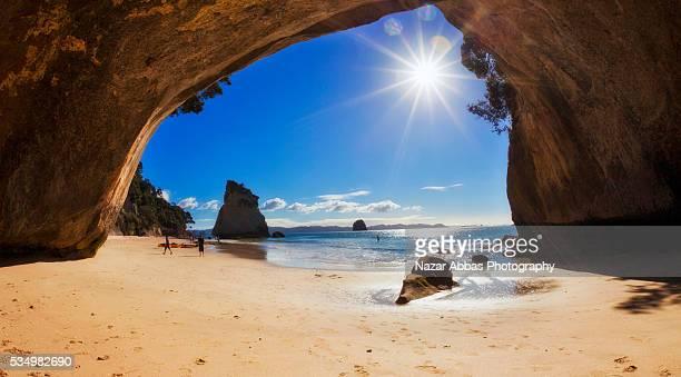 Coromandel Cove