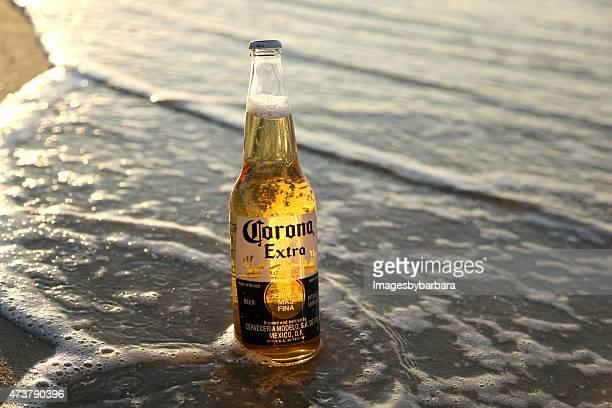 corona zusätzliche bier - corona beer stock-fotos und bilder