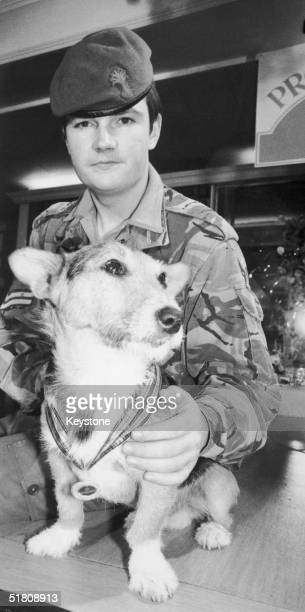 Corporal Arwel Lewis of the Welsh Guards with Rats the mongrel who has served with the army for two years as a mascot 10th December 1979 Rats is in...