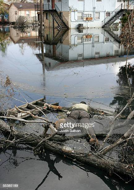 A corpse is seen foating in a flooded section of the St Bernard Parish September 12 2005 in New Orleans Louisiana Rescue efforts and clean up...