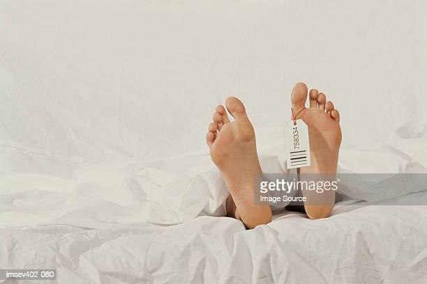 corpse - dead body stock-fotos und bilder
