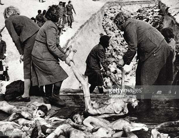 Corpses in a mass grave in Bergen Belsen Germany 1945