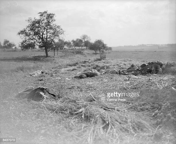 Corpses lying on the battlefield after the first World War I engagement on the River Marne, in north-eastern France.