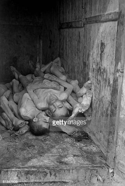 Corpses of prisoners are seen piled up at the Nazi concentration camp of Buchenwald in April 1945 upon the liberation of the camp by Allied troops...