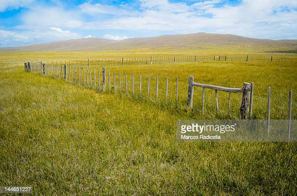 corral at patagonic steppe - radicella stock photos and pictures