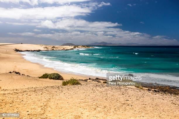 corralejo on fuerteventura - küstenlandschaft stock pictures, royalty-free photos & images