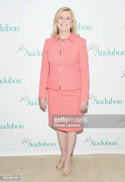 Correspondent Anne Thompson attends the National Audubon Society's Women In Conservation luncheon at The Plaza Hotel on May 20 2014 in New York City