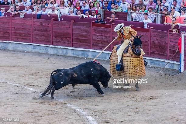 Corrida de Toros (bullfight)