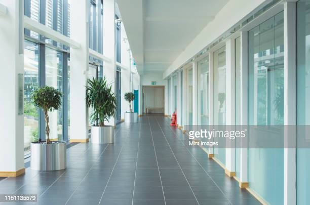 corridor in a modern office - corridor stock pictures, royalty-free photos & images