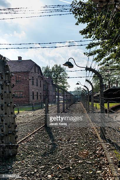 Corridor of electrified barbedwire fences separating prison camp from administrative offices It was the largest of the German concentration camps...