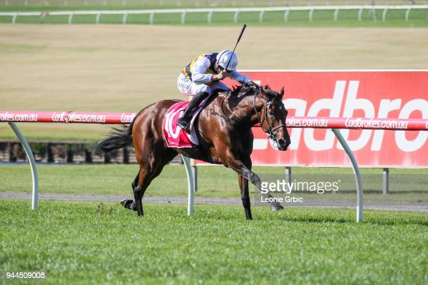 Corrs ridden by Fred Kersley wins the Dream Thoroughbreds Handicap at Ladbrokes Park Lakeside Racecourse on April 11 2018 in Springvale Australia