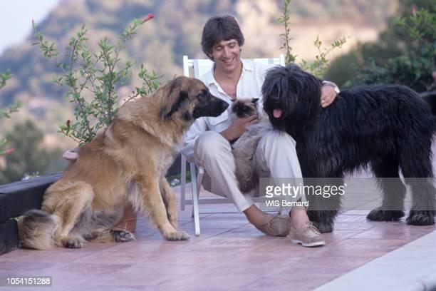 Corse Juillet 1990 Le chanteur Yves DUTEIL en vacances dans sa maison en Corse Ici assis dans une chaise longue avec son chat persan Félix sur les...