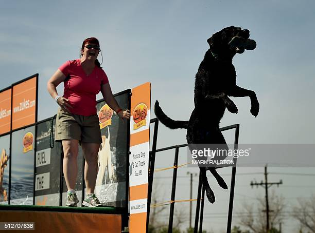 Cortney Adams watches as her dog 'Ouzo' leaps into the water to record the distance of his jump during the Dock Dogs West Coast Challenge in...