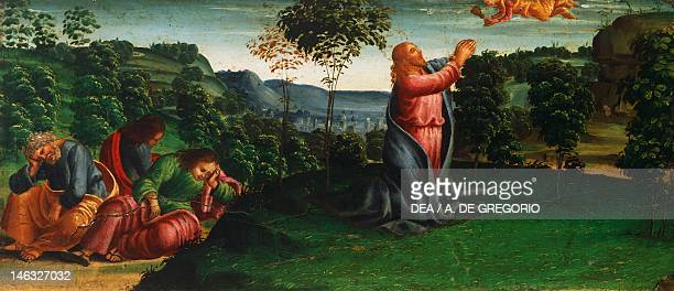 Cortona Museo Diocesano Stories of Christ Christ in the Garden of Gethsemane by Luca Signorelli