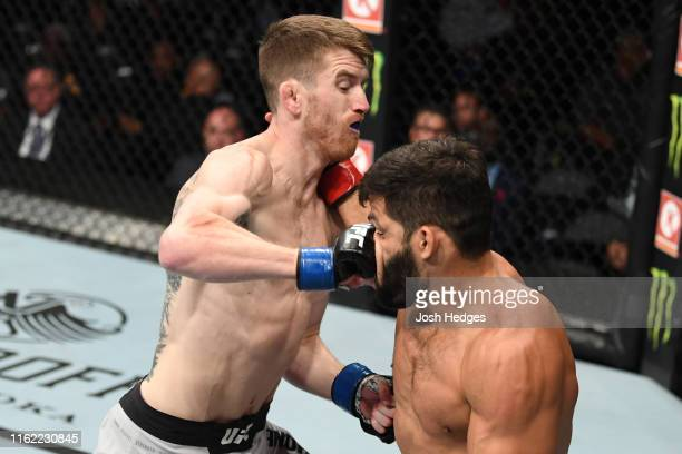 Cory Sandhagen punches Raphael Assuncao of Brazil in their bantamweight bout during the UFC 241 event at the Honda Center on August 17 2019 in...