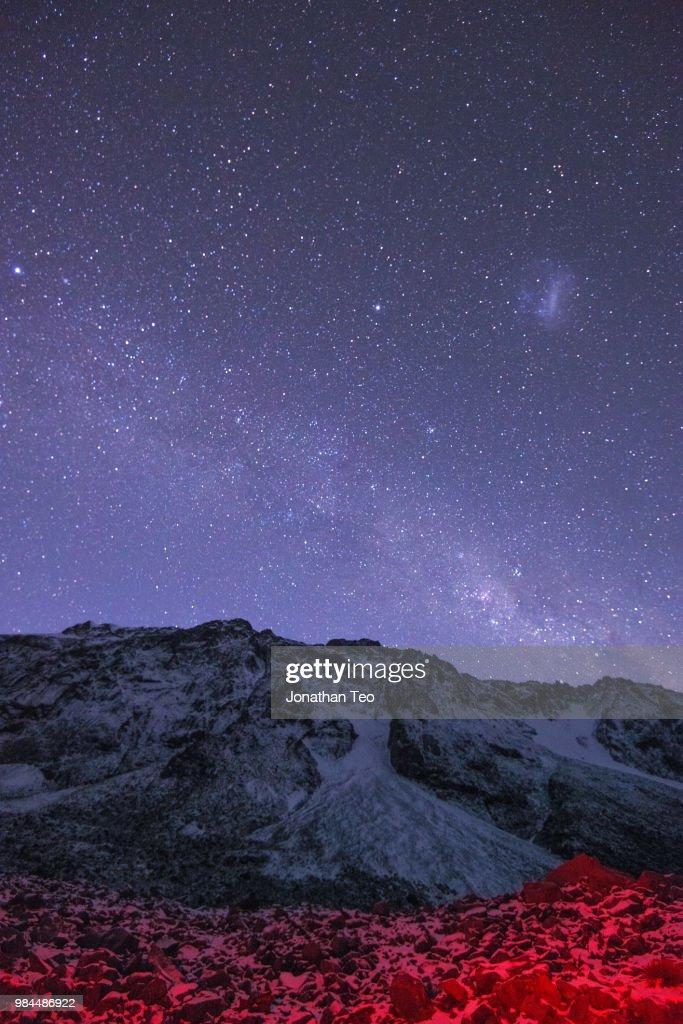 Cosmic Cosmo : Stock Photo