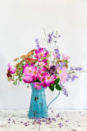 Cosmos and Mixed Flowers in Blue Watering Can - gettyimageskorea