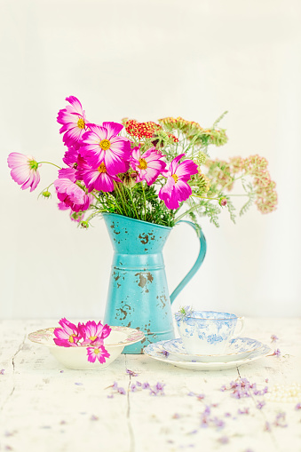 Cosmos Flowers with Vintage Tea Cup and Saucer - gettyimageskorea