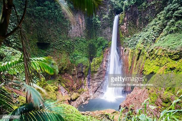 Costa Rica, Catarata del Toro waterfall