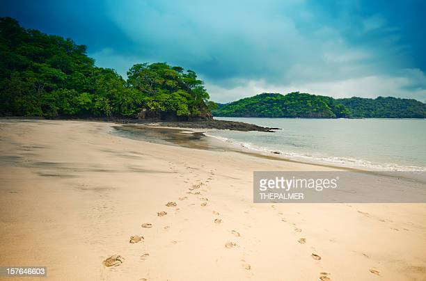 costa rica desert beach