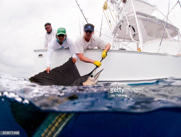 Costa Rica fishing for Pacific Sailfish