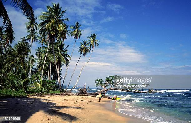 Costa Rica, Limon Province, Playa Chiquita, surfers.