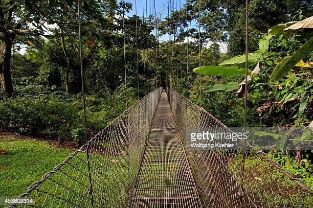 Costa Rica Near Arenal Rain Forest Canopy Walk Hanging Bridge