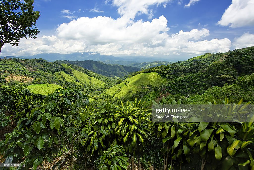 Costa Rica : Stock Photo