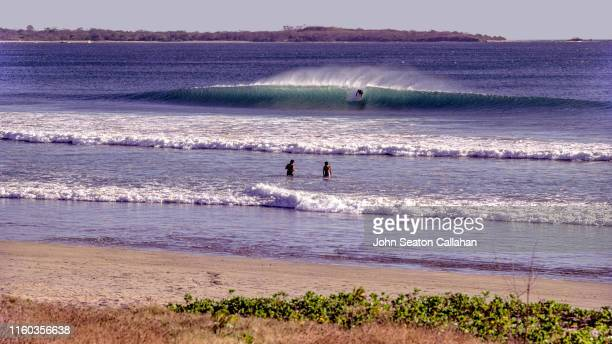 costa rica, playa grande - liberia stock pictures, royalty-free photos & images