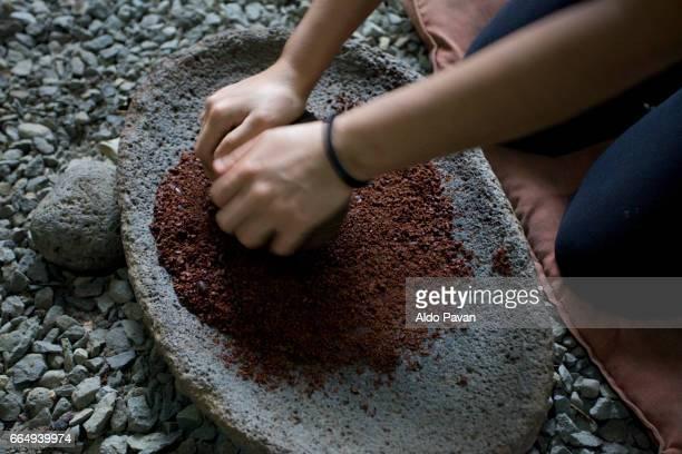 Costa Rica, Sarapiqui, cocoa processing: shredding of beans