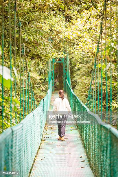 costa rica, tourist on a suspension bridge - iacomino costa rica foto e immagini stock