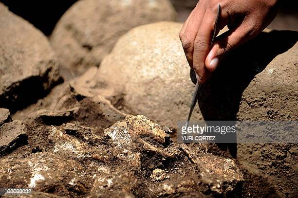 A Costa Rican archaeologist works on a human skeleton at an indigenous cemetery found in the town of Tres Rios outskirts of San Jose Archaeologists...