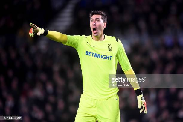 Costel Pantilimon of Nottingham Forest gestures during the Sky Bet Championship match between Derby County and Nottingham Forest at Pride Park...