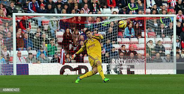 Costel Pantilimon of Sunderland in action during the Barclays Premier League match between Sunderland and Everton at the Stadium of Light on November...